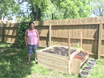 Applications for the Home Vegetable Garden Program are Open!