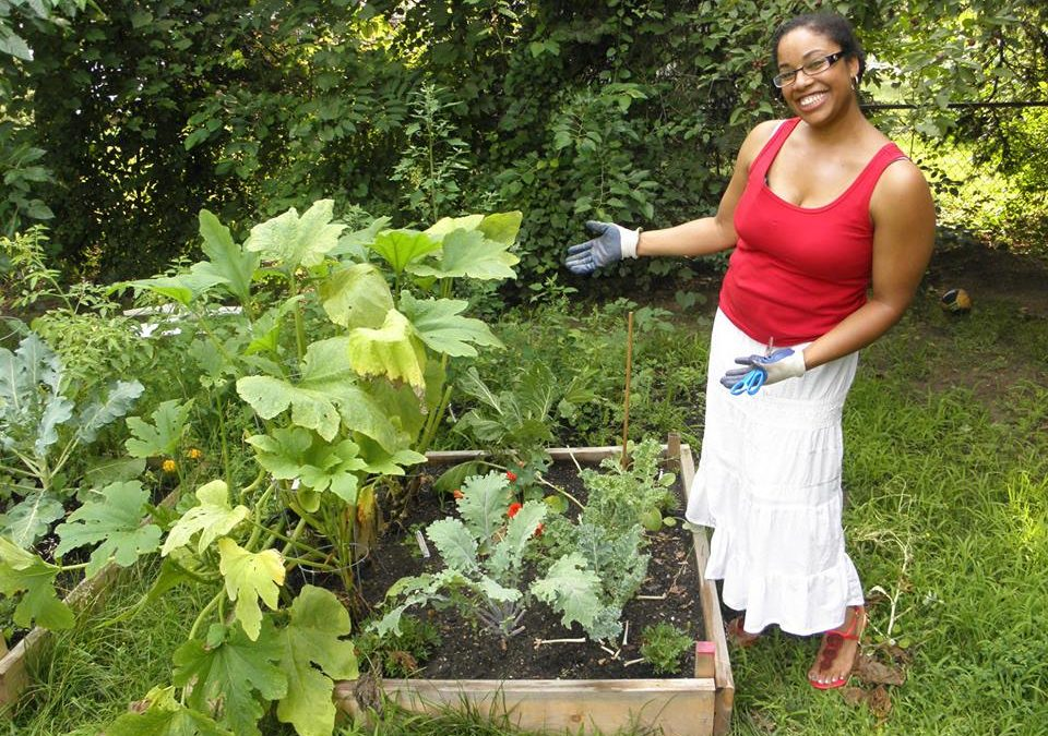 Home Vegetable Garden Program Applications Open!