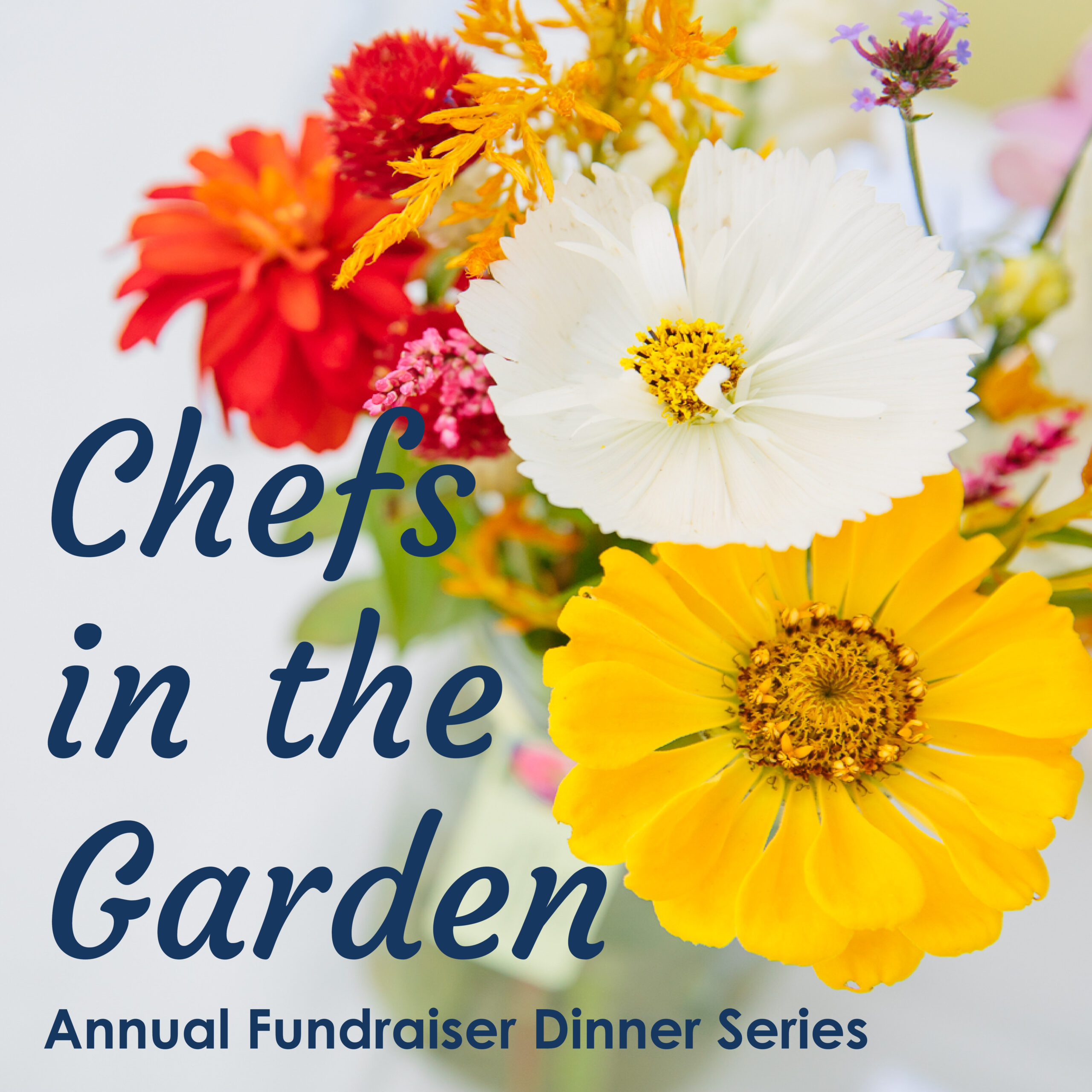 Chefs in the Garden is back!